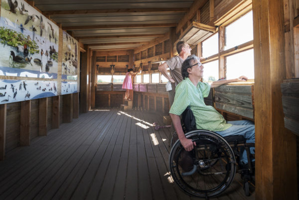 Dans un observatoire à l'étang du Louroux 2 personnes, dont une en fauteuil roulant, regardent le paysage